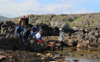 From seaweed to star gazing – explore the Skellig Coast